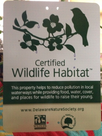 Our property is a Certified Wildlife Habitat, sanctioned by the Delaware Nature Society