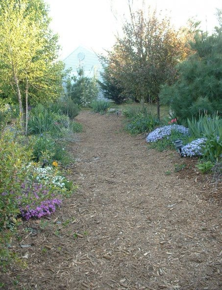 One year later, perennials and trees were planted along the path's outer edges